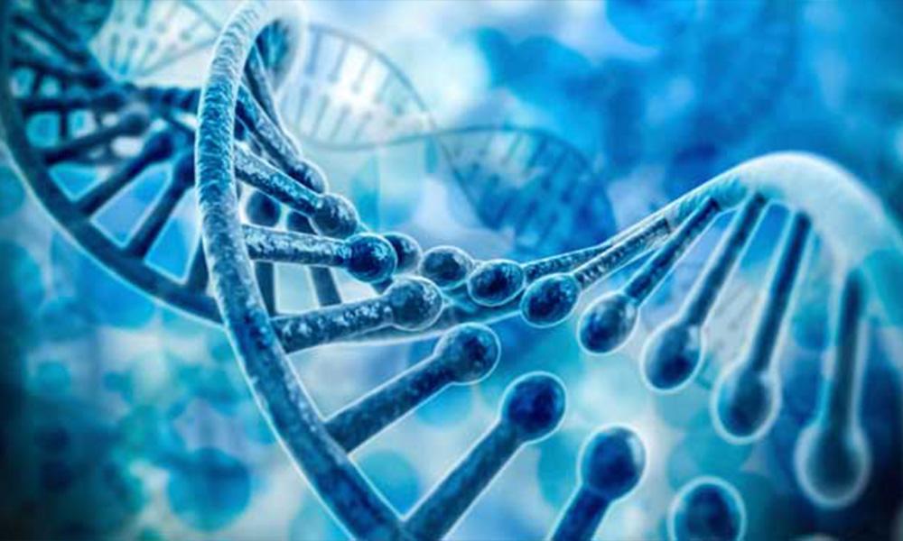 Biohacking: ¿progreso o retroceso?